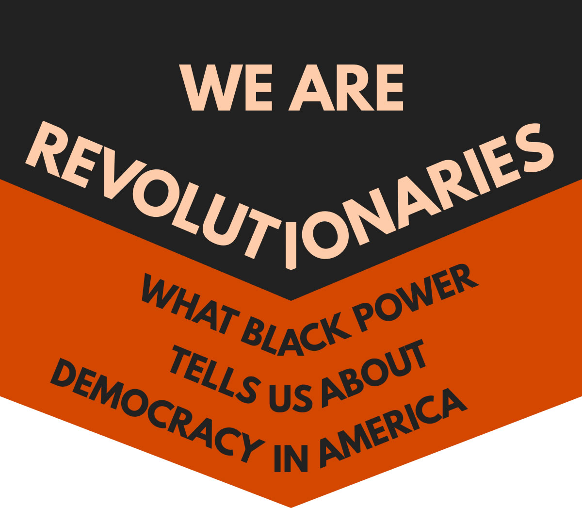 We Are Revolutionaries image