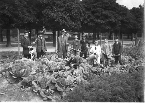 Archival photo of Austrian gardeners