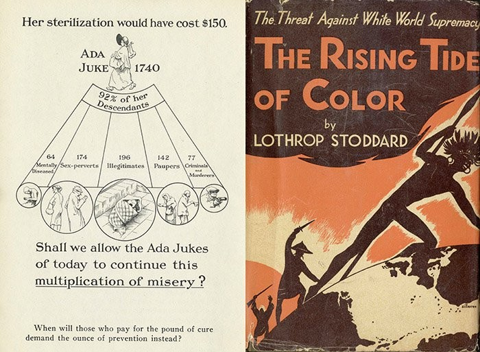 """Left image shows a graphic calling for sterilizing women. Right image is a book cover for """"The Threat of White World Supremacy: The Rising Tide of Color"""" by Lothrop Stoddard"""