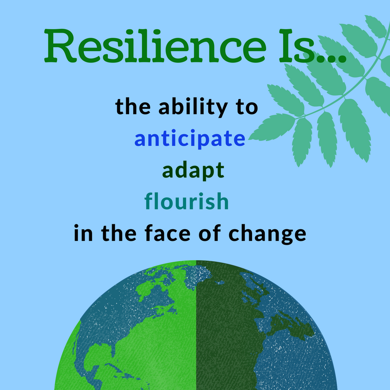 "Graphic of earth saying ""Resilience is...the ability to, anticipate, adapt, flourish, in the face of change"""