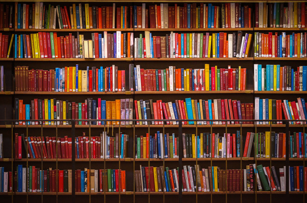 bookshelves filled with colorful books